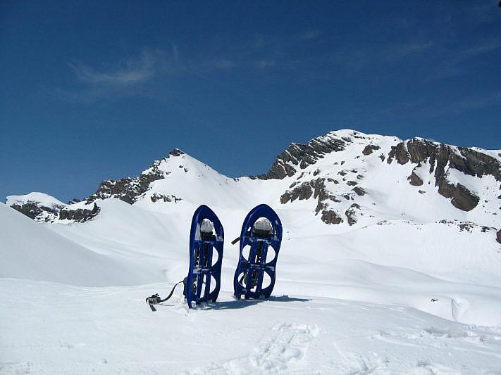 Dalla Bassa del Colombart verso l'Enciastraia (2955 m)