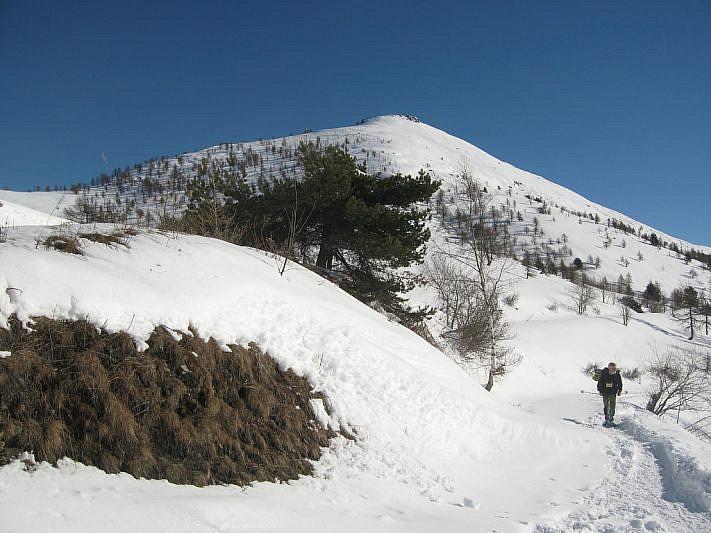 Il Monte Birrone visto dal colle