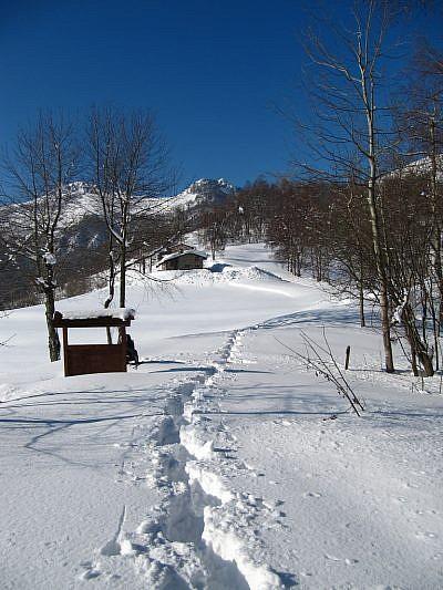 Monte Tamone