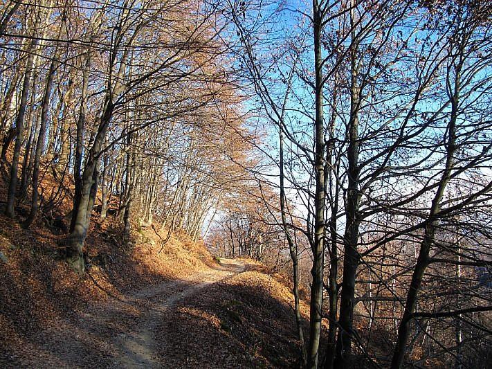 La strada che conduce al vallone di Francia
