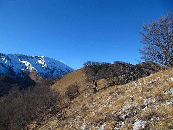 Cima Cialancia, nascosta un pò dall'albero, all'estrema destra