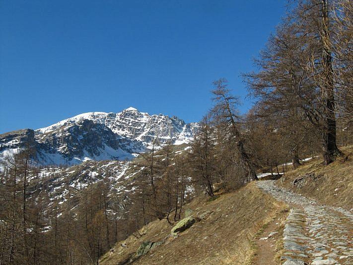 Il Monte Bego compare al fondo