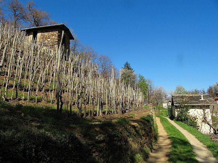 Colline di Boves e Fontanelle