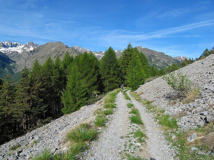 La strada che taglia la pietraia