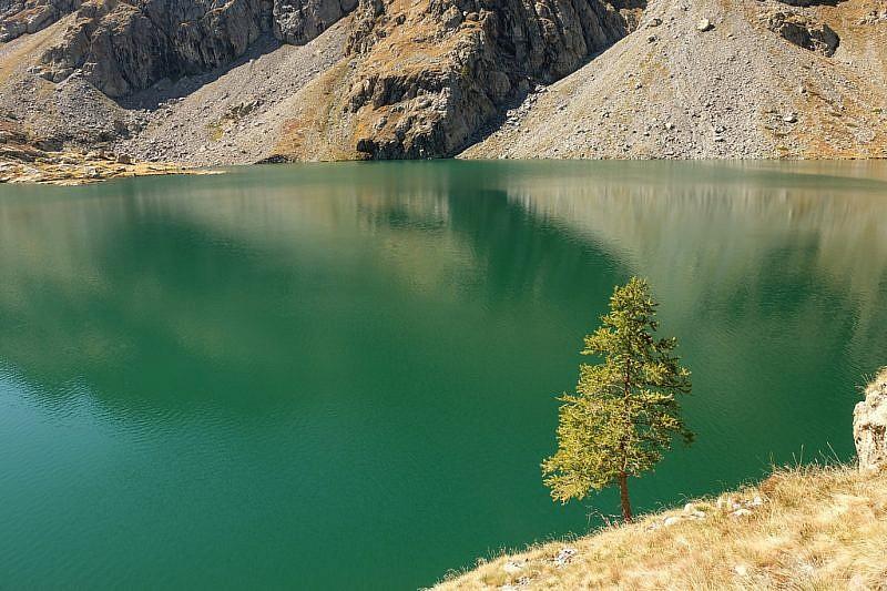 Particolare del Lac Vert