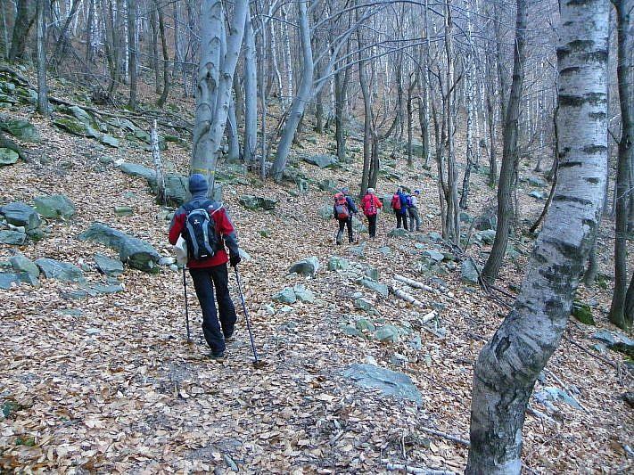 Ancora sulla Via Grima nella parte ombrosa del bosco