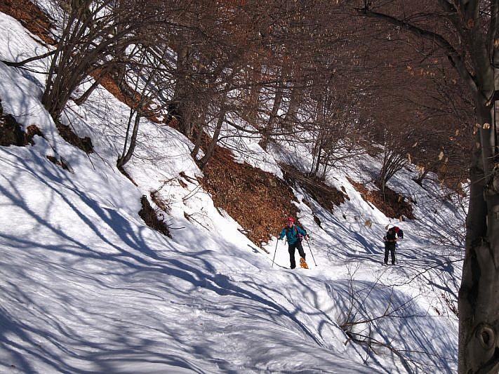 In salita lungo la pista forestale