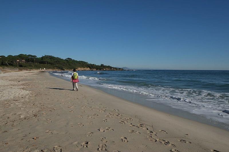 Tratto nella plage des Salins