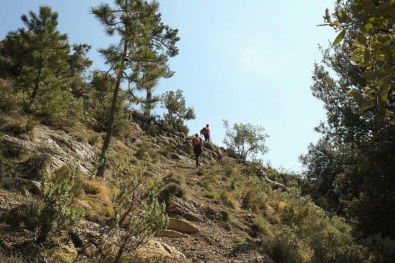 Verso l'Alta via dei Monti Liguri