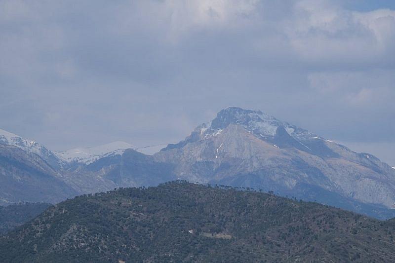 In lontananza, verso nord, il Monte Toraggio