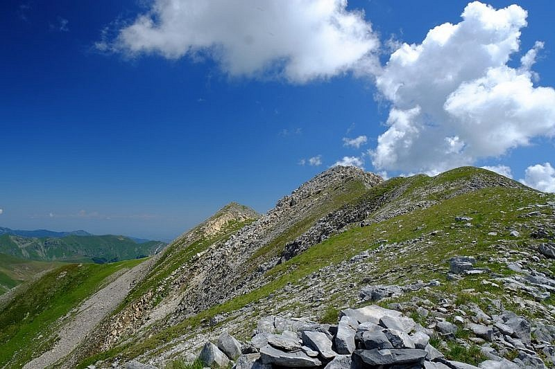 Curnìs Auta: anello ai Monti Viribianc e Viridio