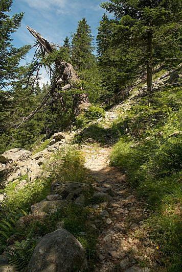 Il sentiero di salita