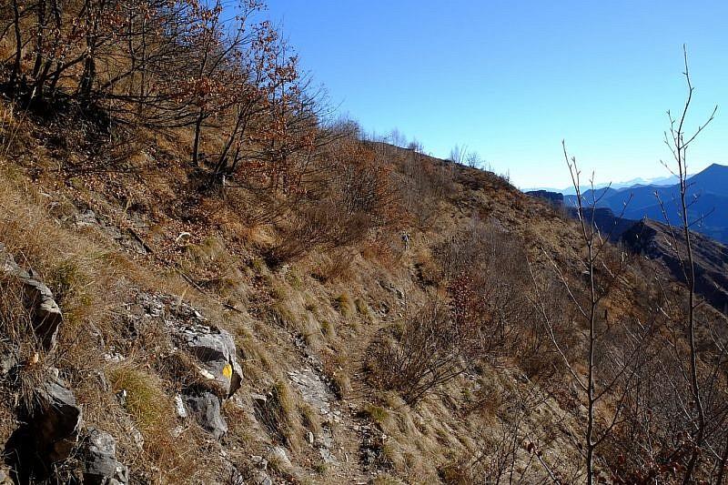 Sentiero nella comba di Valcalda