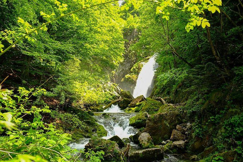La cascata alimentata dalle sorgenti del Pesio