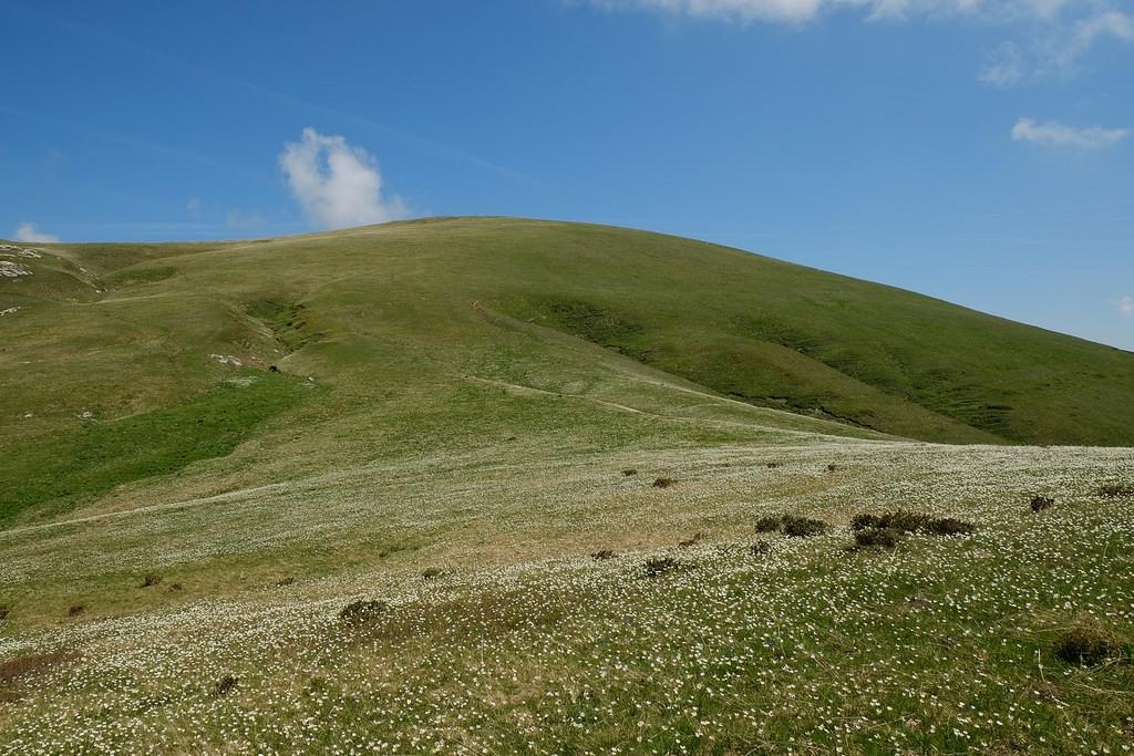 Colla Vaccarile e Punta Mirauda