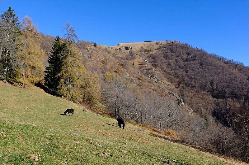 Al fondo, a destra, la cima del monte Ricordone