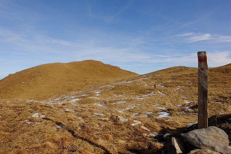 Grandi dossi erbosi che conducono alla cima della Cernauda