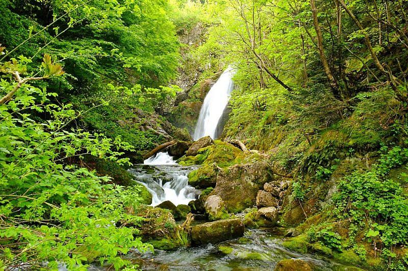 La cascata proveniente dalle sorgenti del Pesio