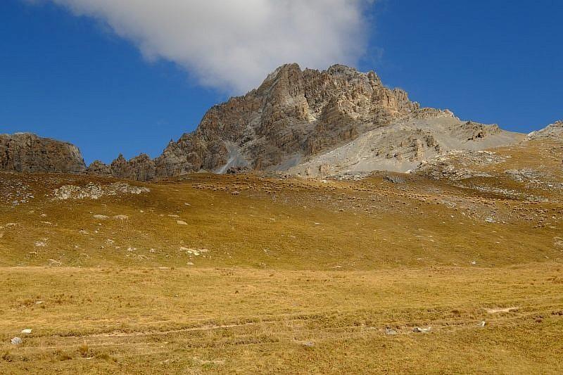 Monte Oronaye con gregge