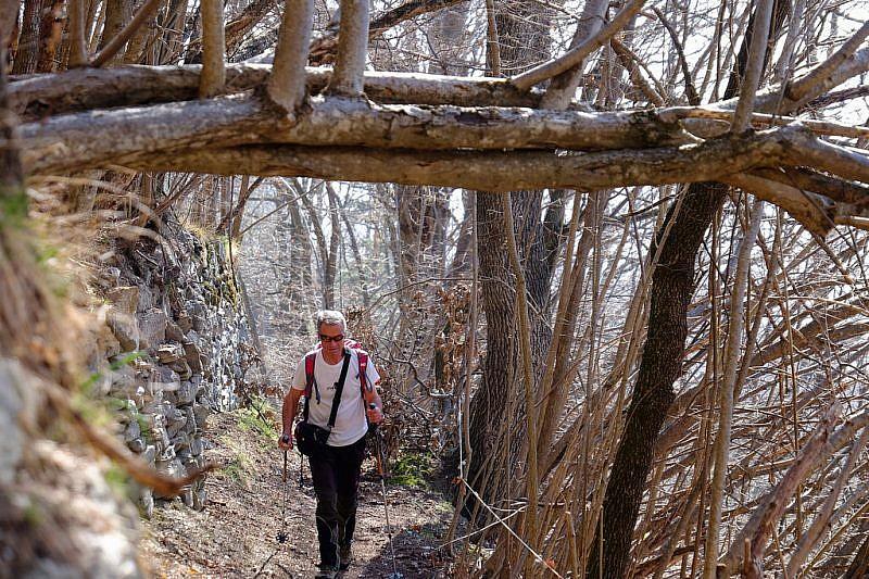 Tra muretti di pietra, sul vecchio sentiero che sale a Rubbio inferiore