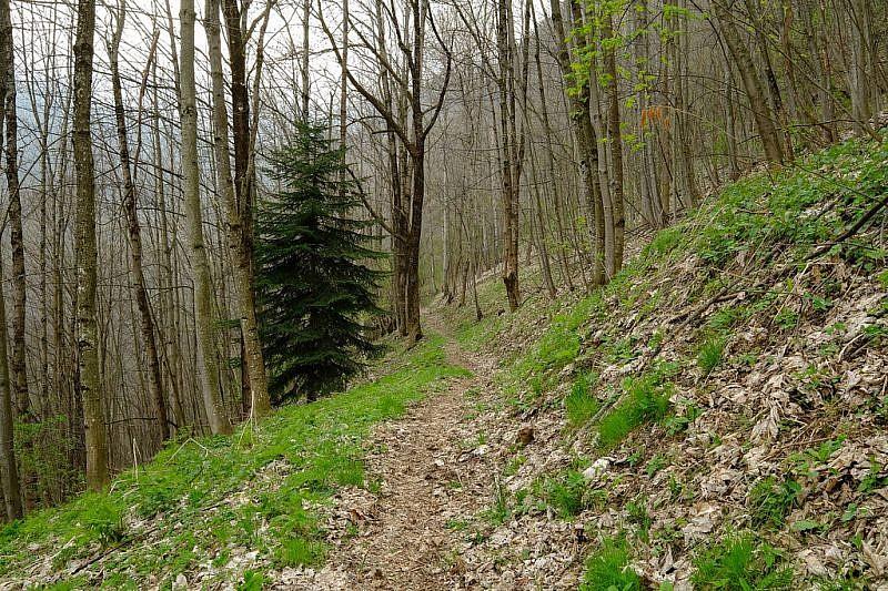 Scendendo sul bel sentiero oltre la borgata Bedale