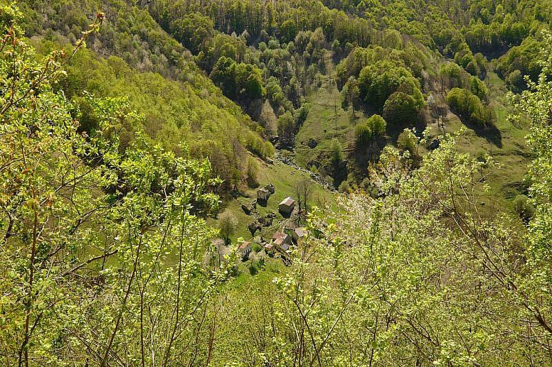 Veduta delle Case Milano dall'alto della pista forestale