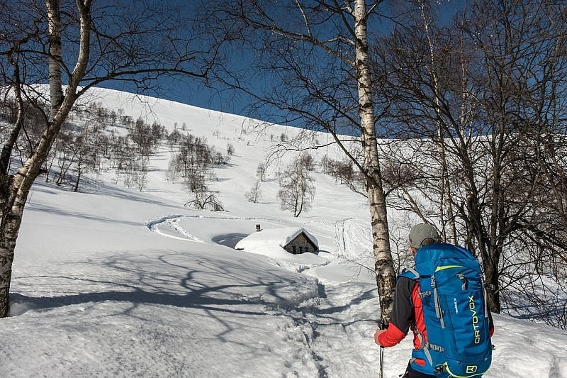 Arrivo alla baita per l'alpeggio