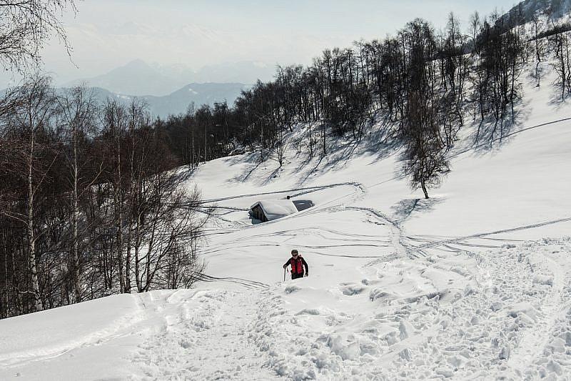 Salendo dalla baita verso l'Alpe