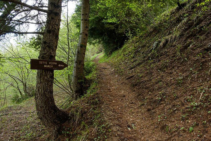 La stradina divenuta sentiero