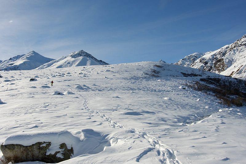 Salendo all'alpe Bulè