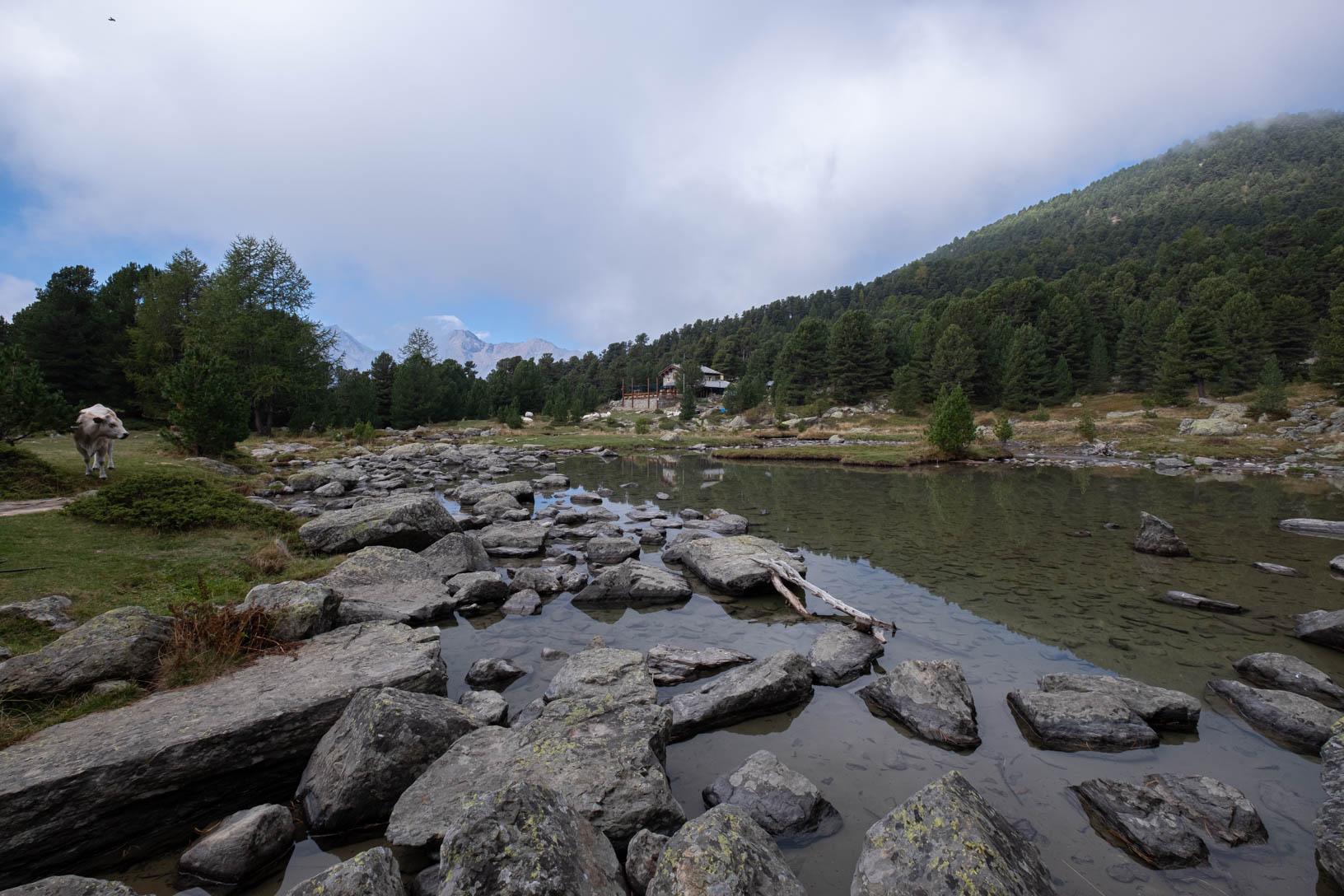 Laghetto e rifugio Bagnour